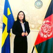 Nasim Amiri